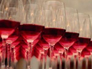 """Catando vinos """"Ribera del Guadiana"""" en Tierra de Barros Image"""