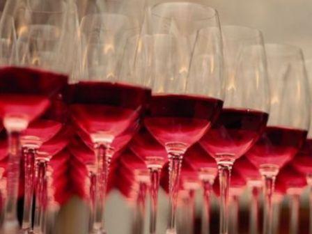 Catando vinos de la Ribera del Guadiana en Tierra de Barros Image
